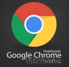 Google Chrome TOR Browser